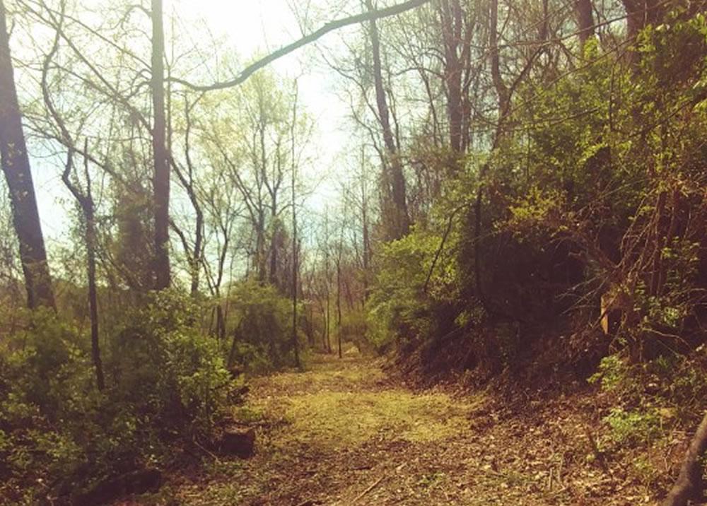 trail-maintenance-cornerstone-main