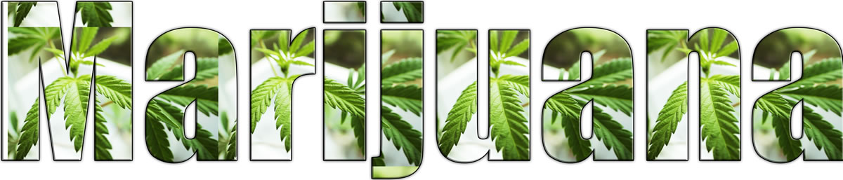 signs someone is addicted to weed